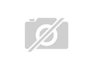 Ich gebe süße Katzenbabys gegen eine geringe Schutzgebühr
